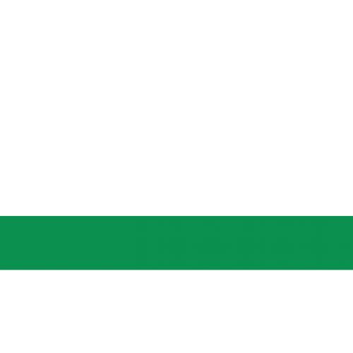 Пластик для гравировки Satins белый\светло-зеленый
